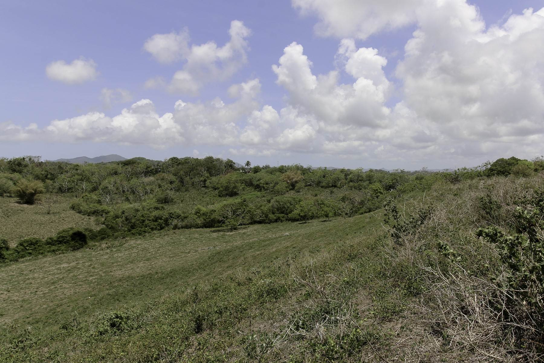 14. Land for Sale at Prime waterview land acreage, Palmas Del Mar Palmas Plantation 1A, Lot B3 Palmas Del Mar, 00791 Puerto Rico